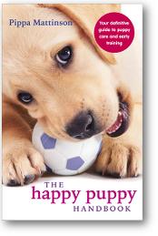 Best Treatment For Syringomyelia In Dogs