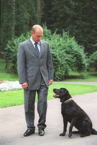 black Lab Konni belonging to president Putin of Russia