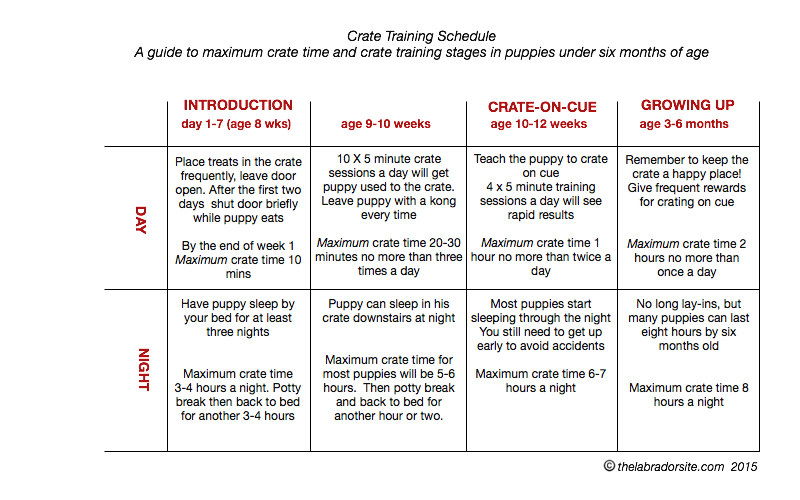 crate-training-chart