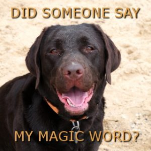 magic-wordFB