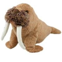 winston-walrus