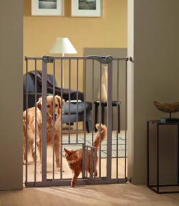 Labrador Puppies And Baby Gates The Labrador Site