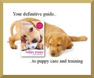 labrador-puppy-page2