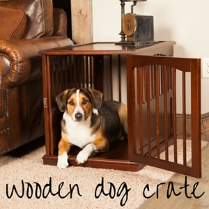 What size crate for labrador