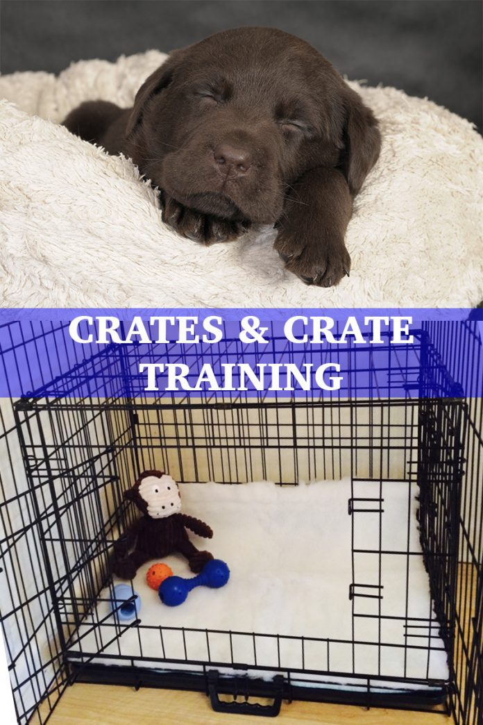 crates and crate training