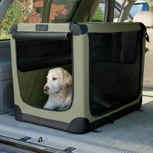 Folding Bed For Dogs