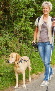 Älterer Mann und Frau gehen Gassi mit ihrem Golden Retriever Hund