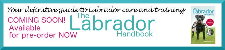 labrador-handbook-banner1