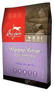 Orijen - one of the best puppy food choices