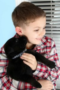 boy with a black labrador puppy