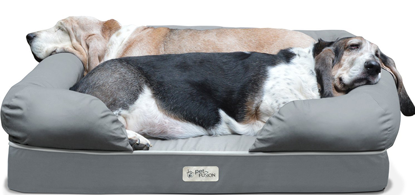 Image Result For Comfy Dog Beds Amazon
