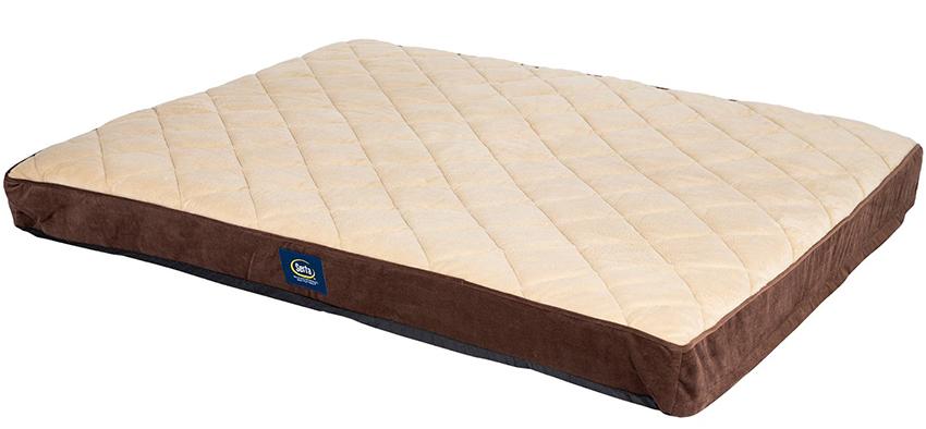 Best Dog Bed For Labrador Uk