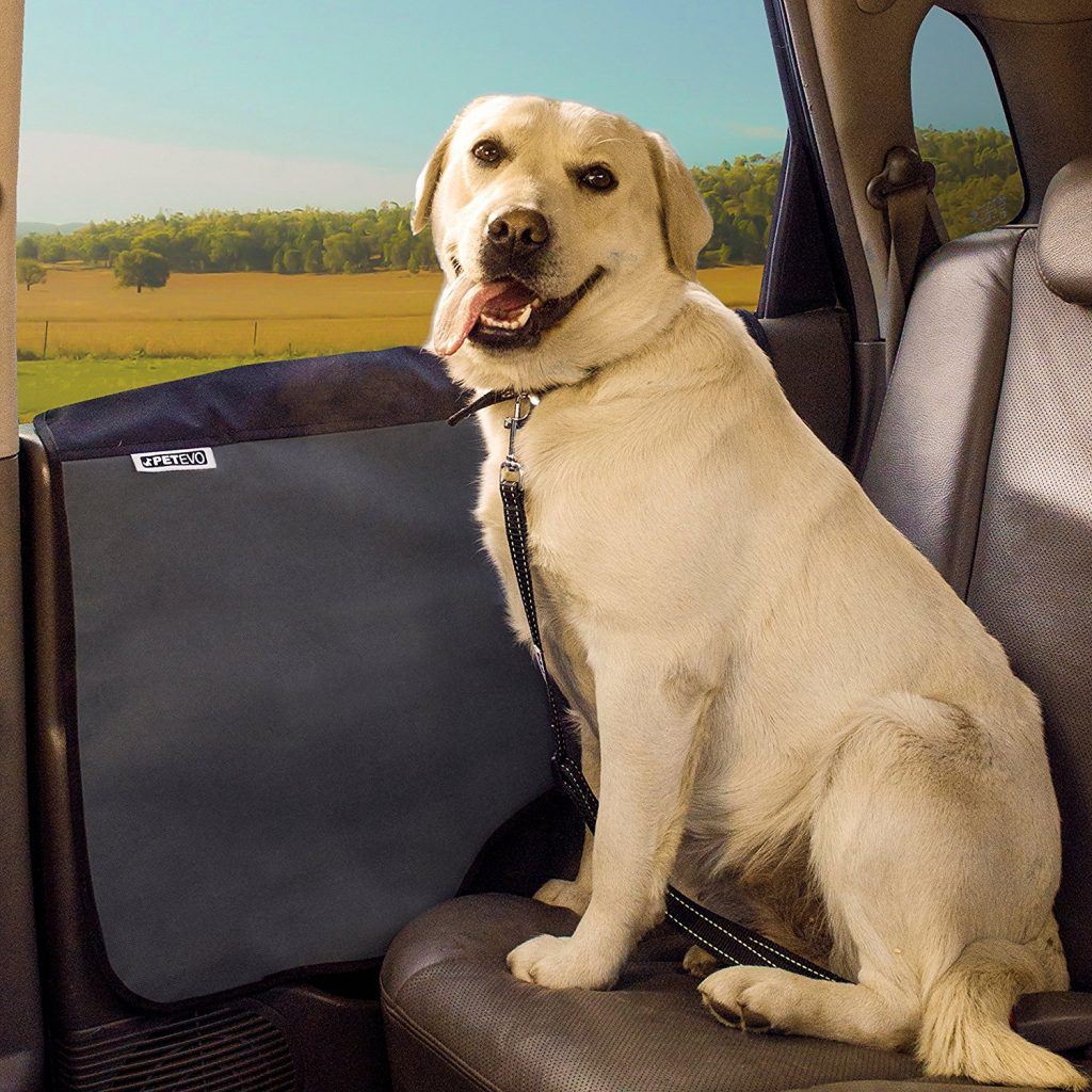 Lab mix labrador cross breeds the labrador site disproportion leg to body length which can result in mobility issues and arthritis especially due to the bassets fairly large weight to height ratio nvjuhfo Choice Image