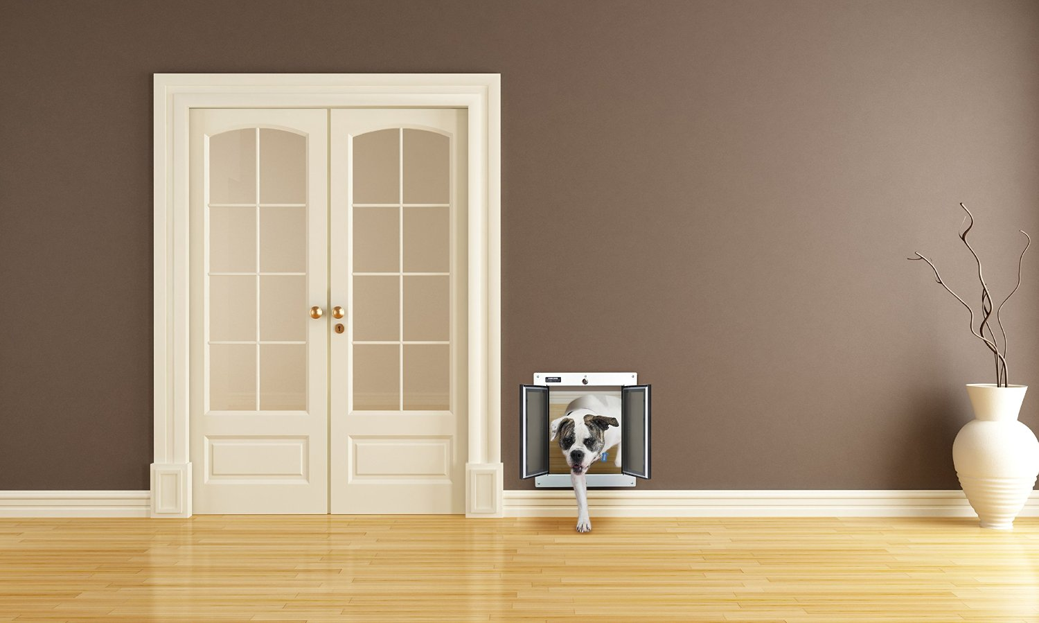 Dog Doors The Best Dog Flaps For Labs The Labrador Site
