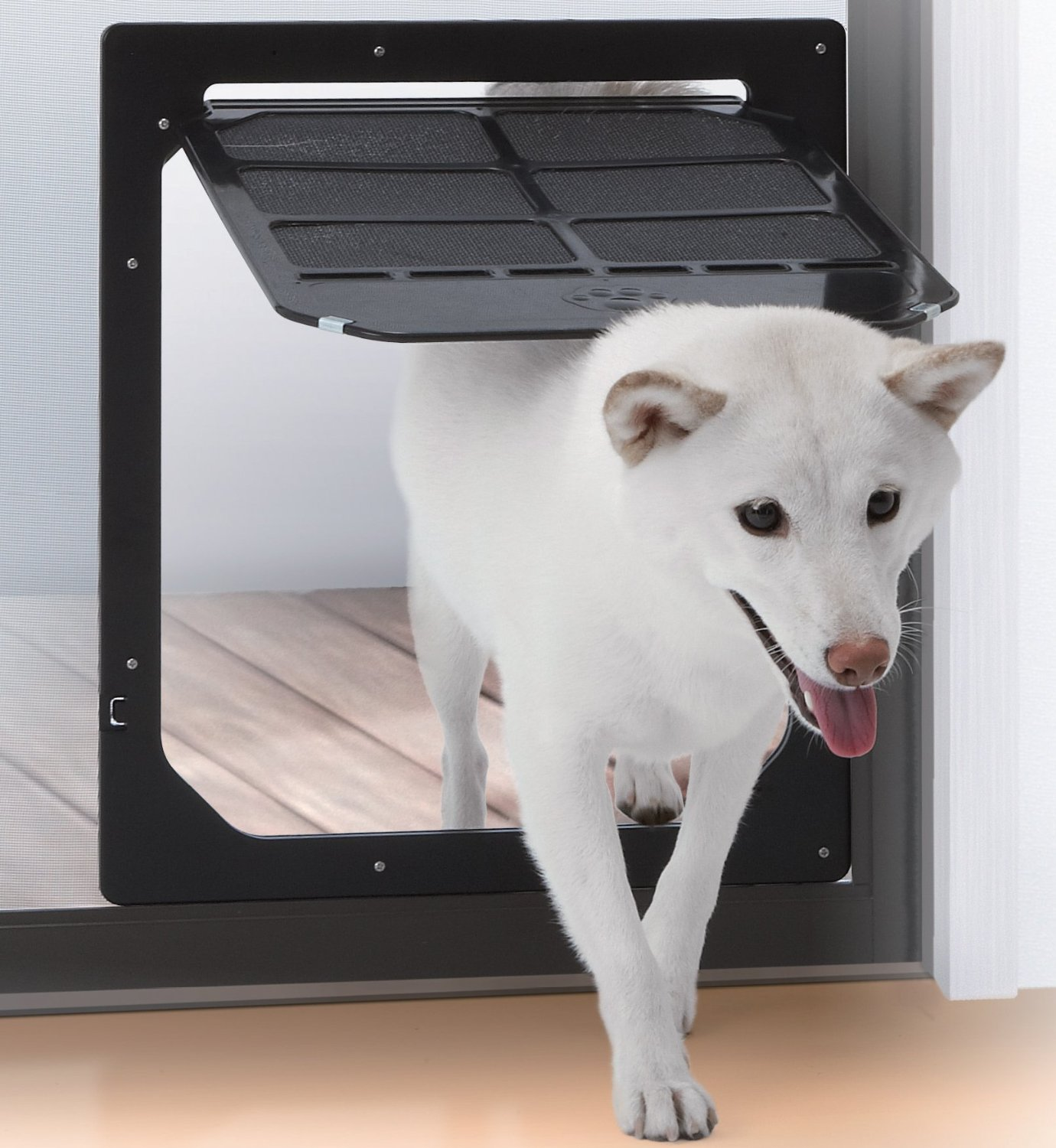 Dog doors the best dog flaps for labs the labrador site takara eventelaan Image collections