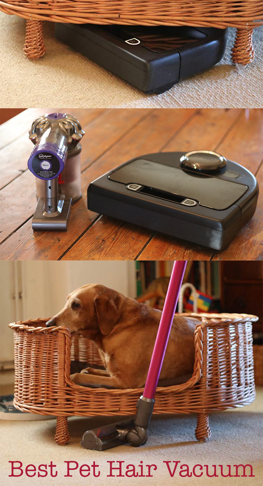 Pippa shares her personal tools and techniques in this best vacuum for pet hair review