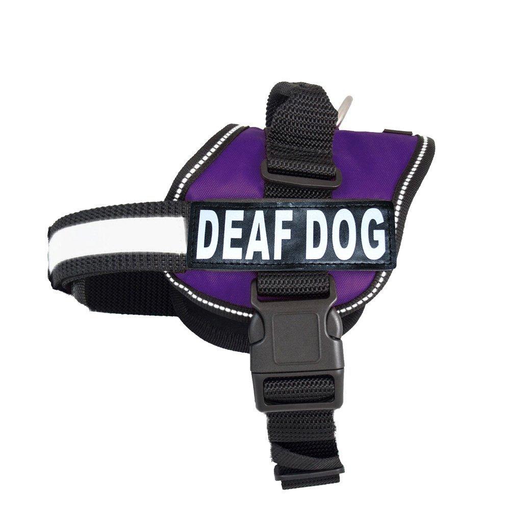 Deaf Dog Training Collar