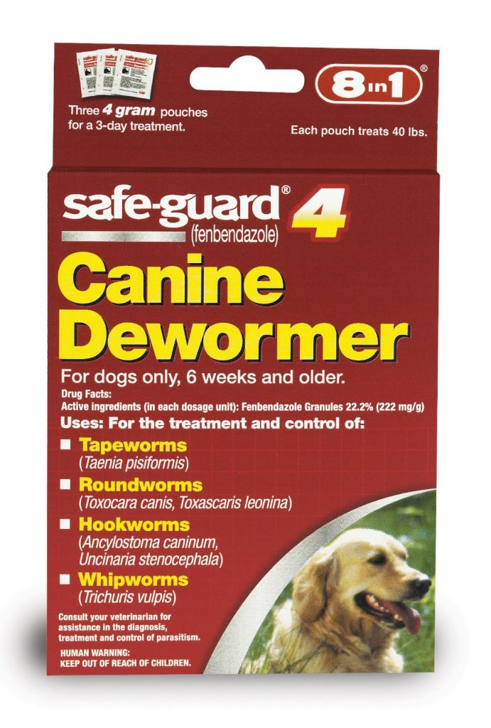 Puppy Worms Treatment Prevention And Diagnosis