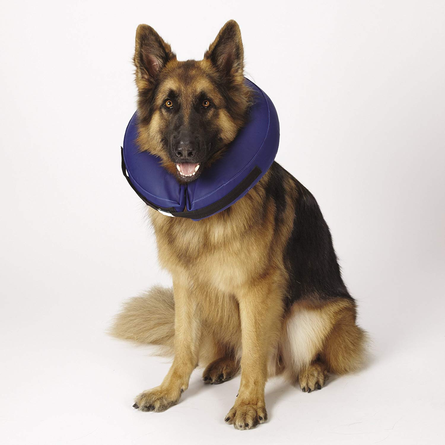 Total Pet Health Inflatable Veterinarian Approved Dog Collar