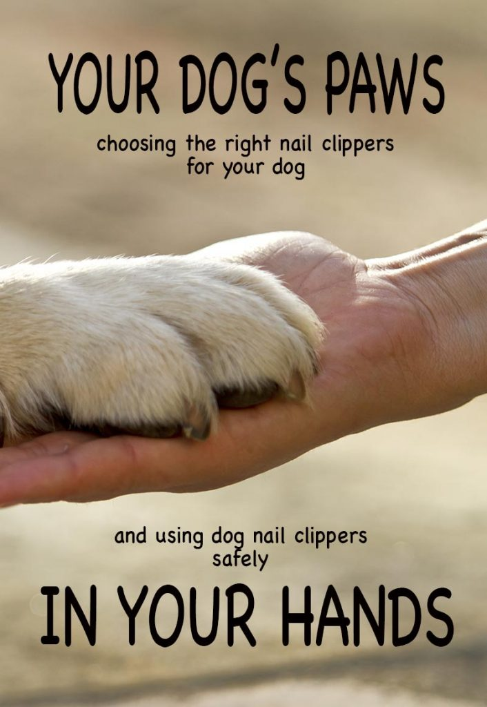 Cutting dogs nails - how to clip or trim your dog's nails safely, and the right nail clippers for the job