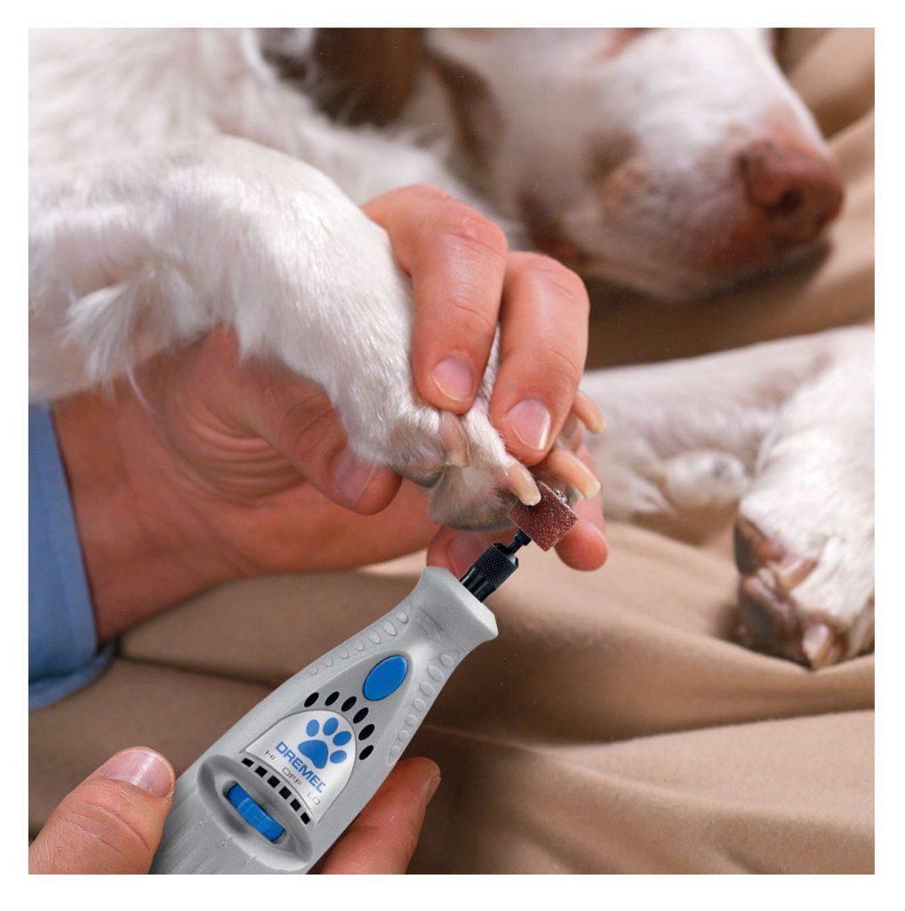 Dog Nail File