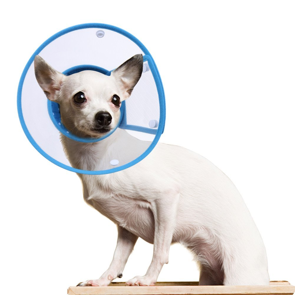 PETBABA Recovery Clear Cone Collar