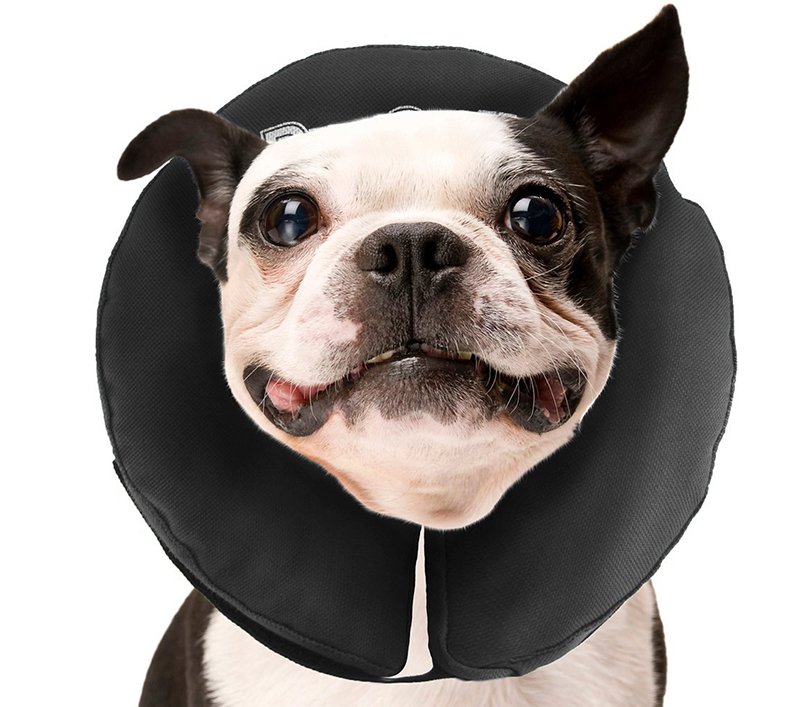 ZenPet Pro Collar Pet E-Collar