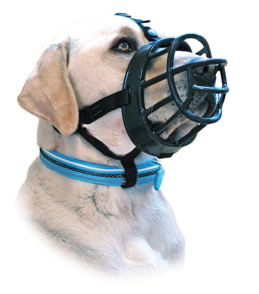 Dog Muzzle To Stop Eating Everything