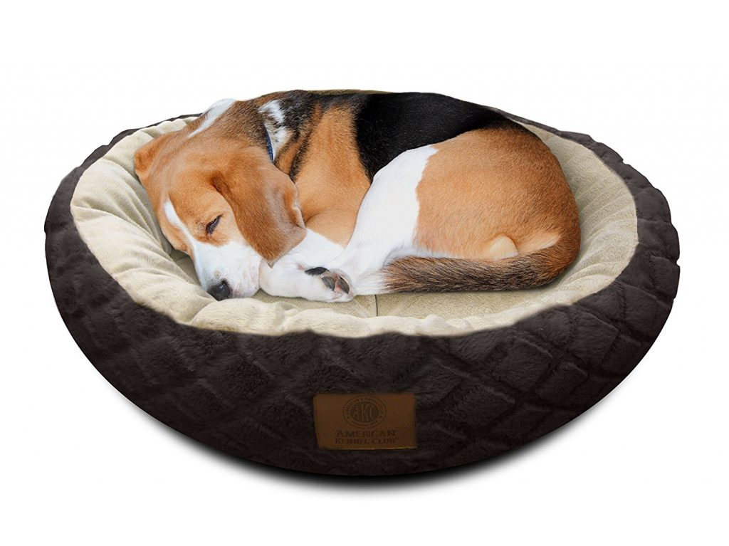 Best Washable Dog Beds For Large Dogs