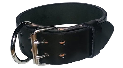 Best Leather Dog Collars
