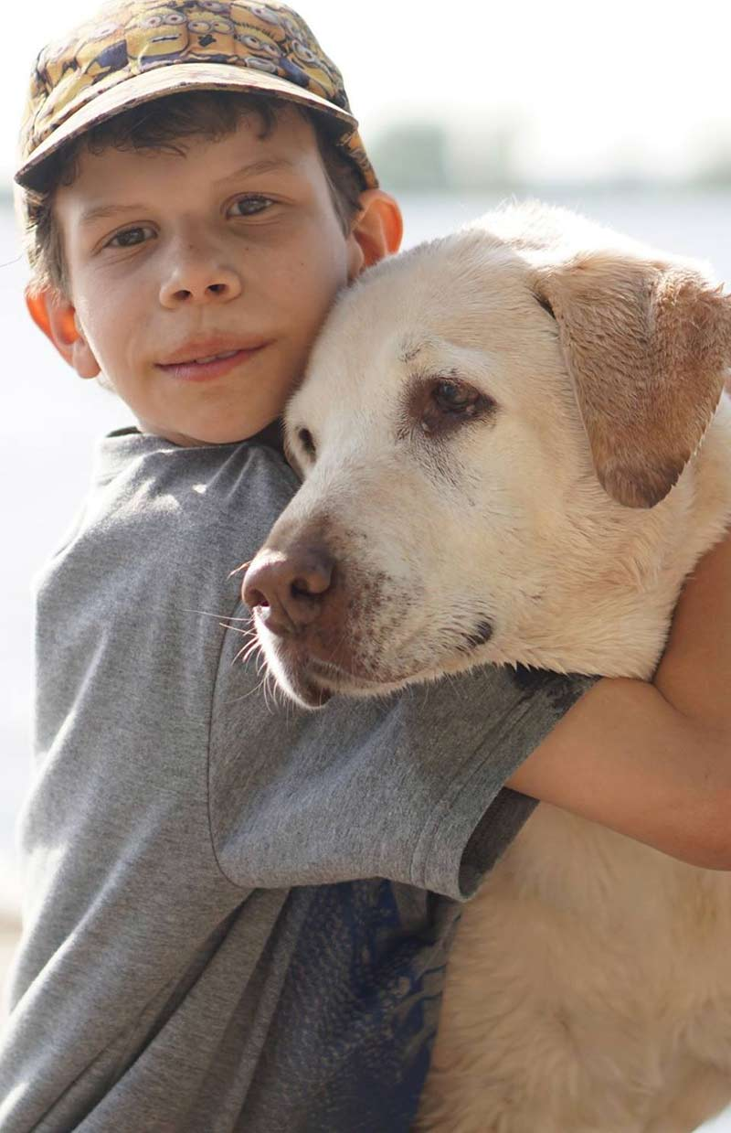 Find out how to play safely with a dog and how to keep your kids safe around dogs