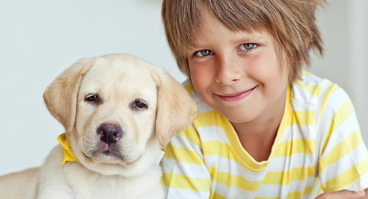 Books On Dog Training For Kids