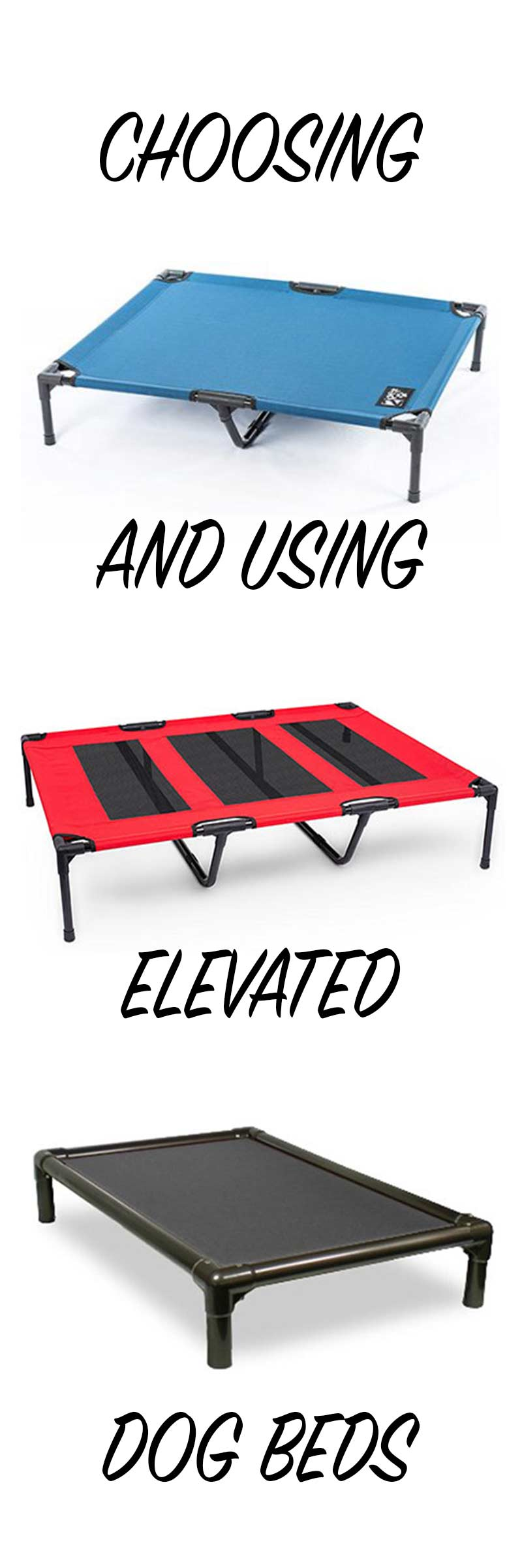 choosing and using a raised dog bed - a personal review