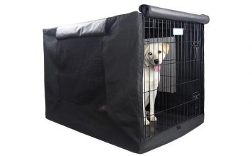 Dog All Of The Sudden Barking In Crate