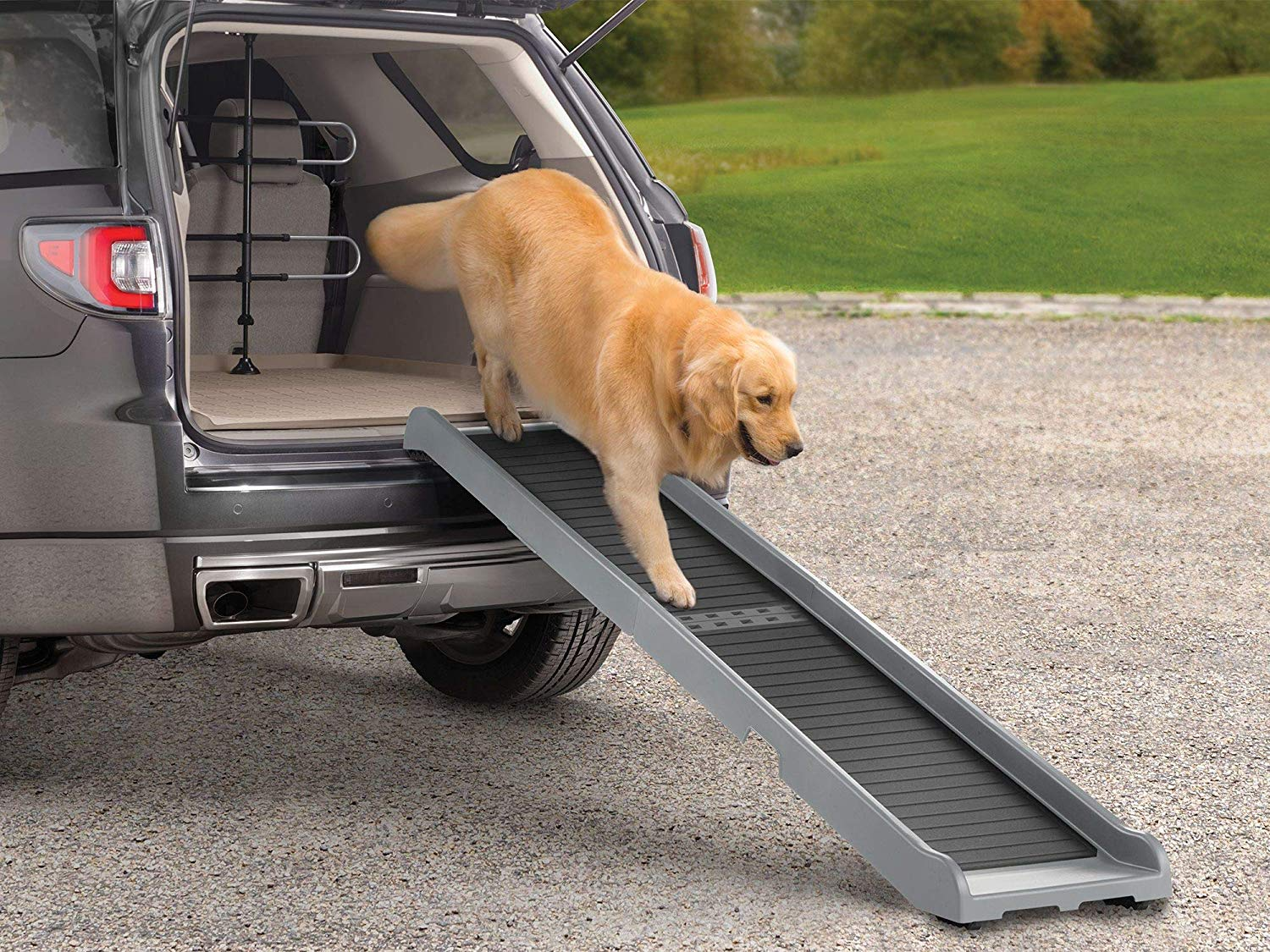 Best Dog Ramp - Reviews of Dog Ramps For Car, Bed, Stairs and More