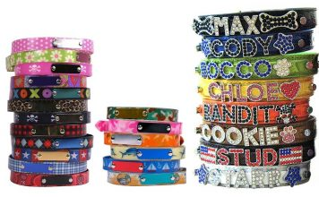Best Personalized Dog Collars For Labradors