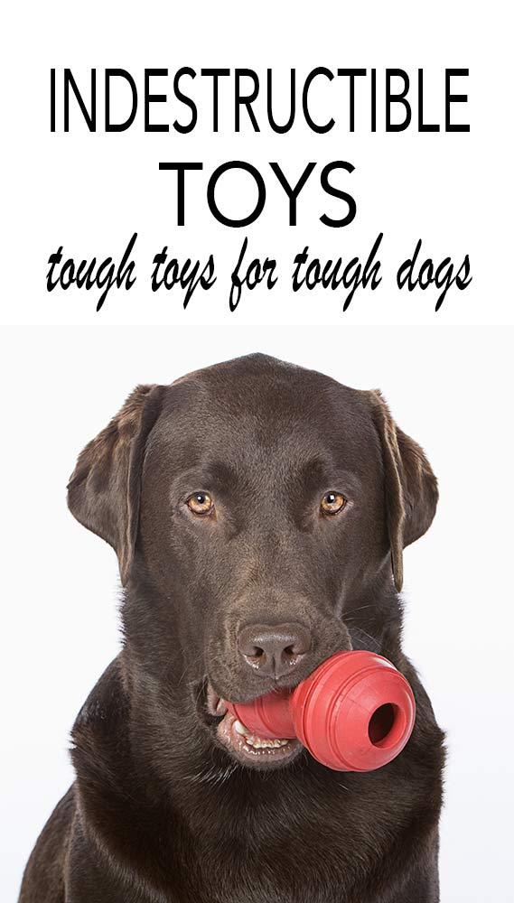 Indestructible dog toys, tough toys for tough dogs