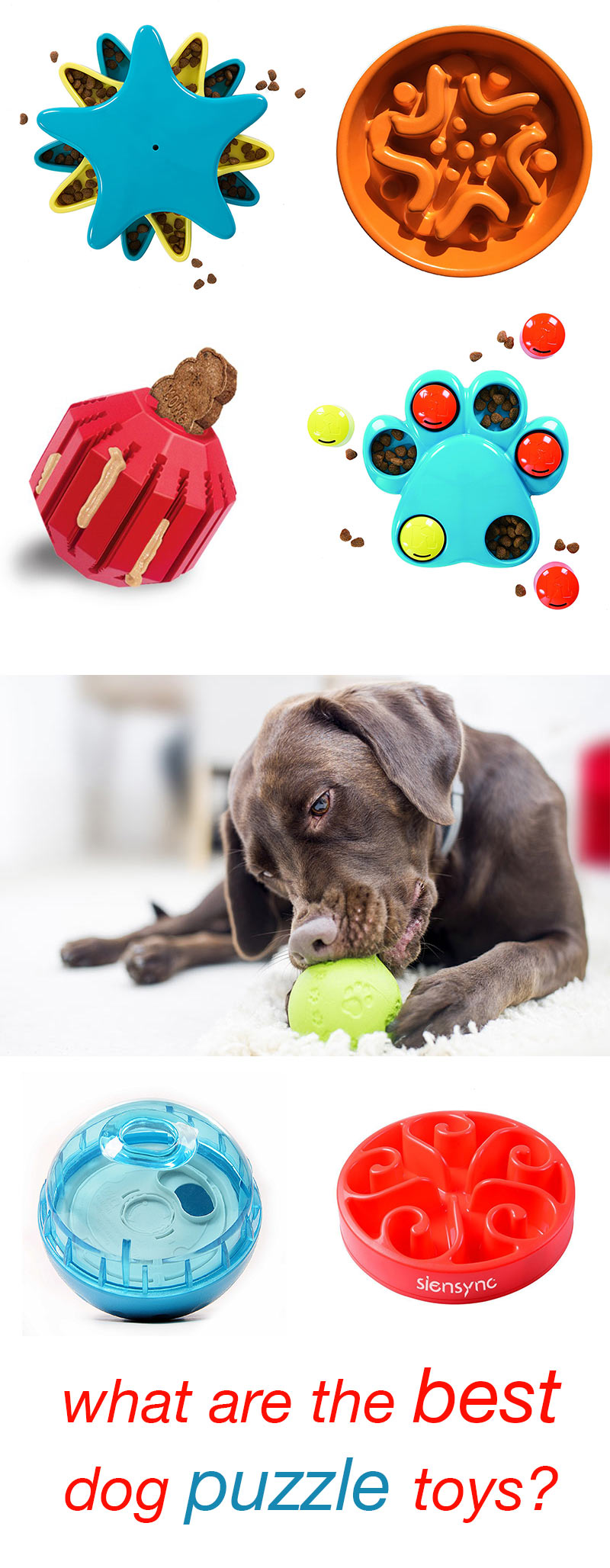 The Best Dog Puzzle Toys - top choices for active, intelligent and bored pups
