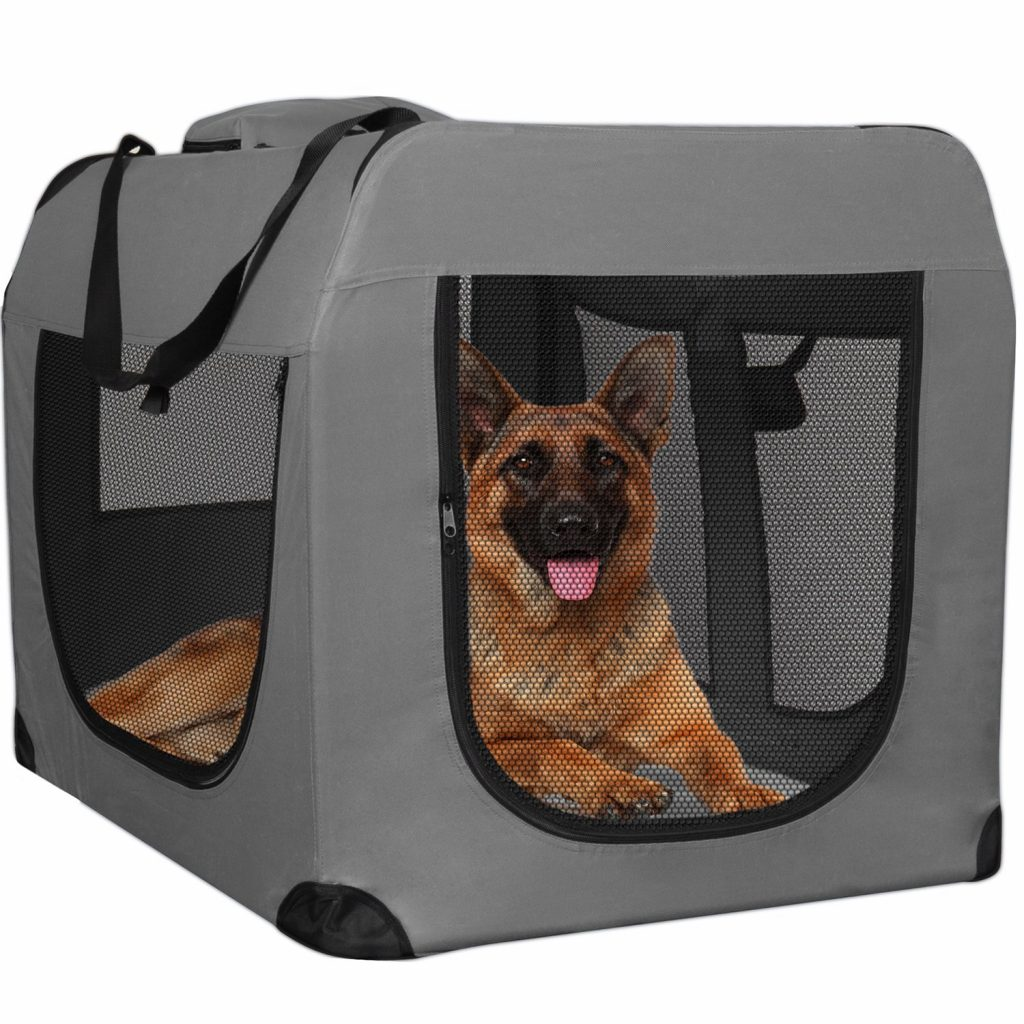 Best Dog Carriers For Labradors And Other Larger Breeds