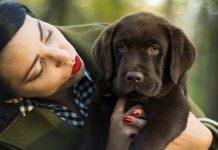pup registration