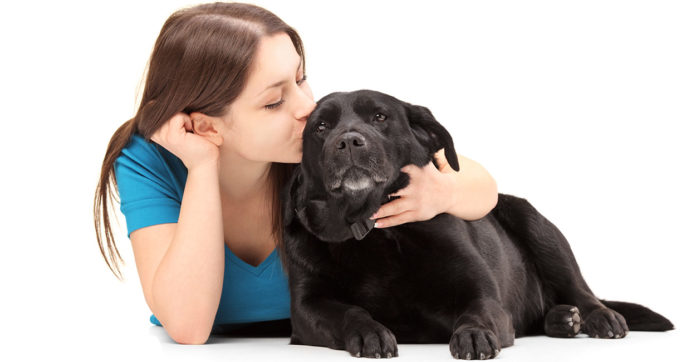 Do dogs like kisses?