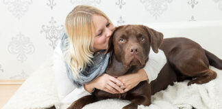 do dogs like kisses