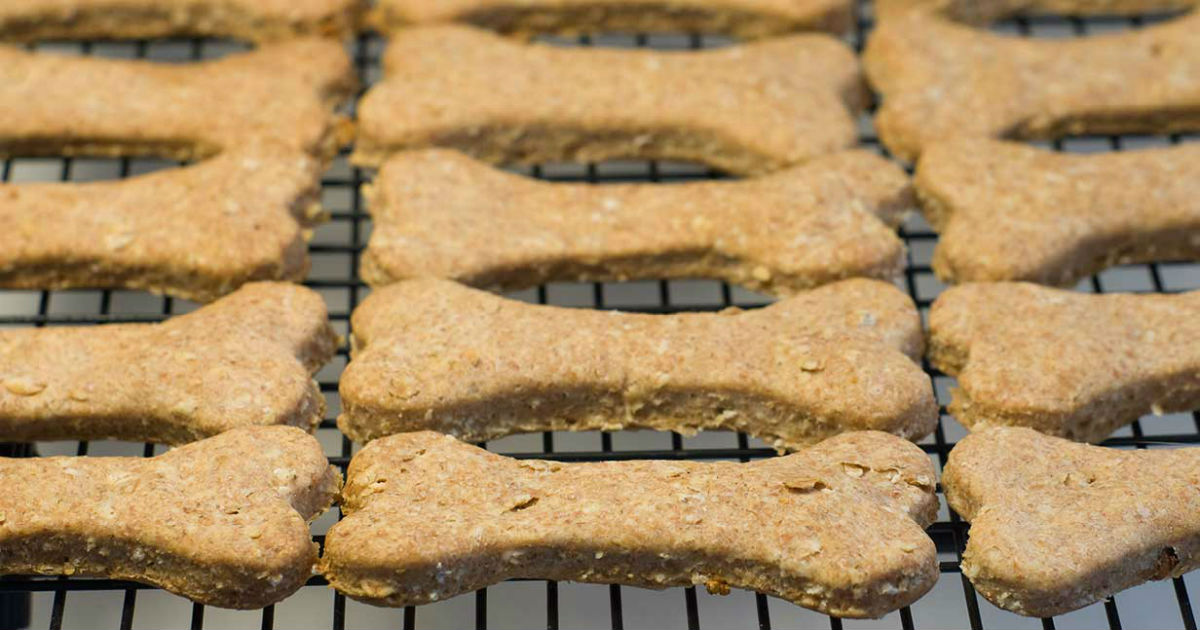 Homemade Dog Biscuits Top Recipes For Making Your Own Treats