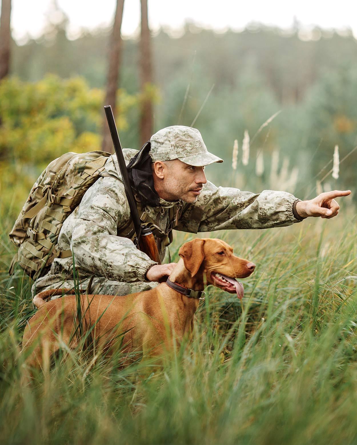Lovački pas - Page 5 Hunting-dog-breeds