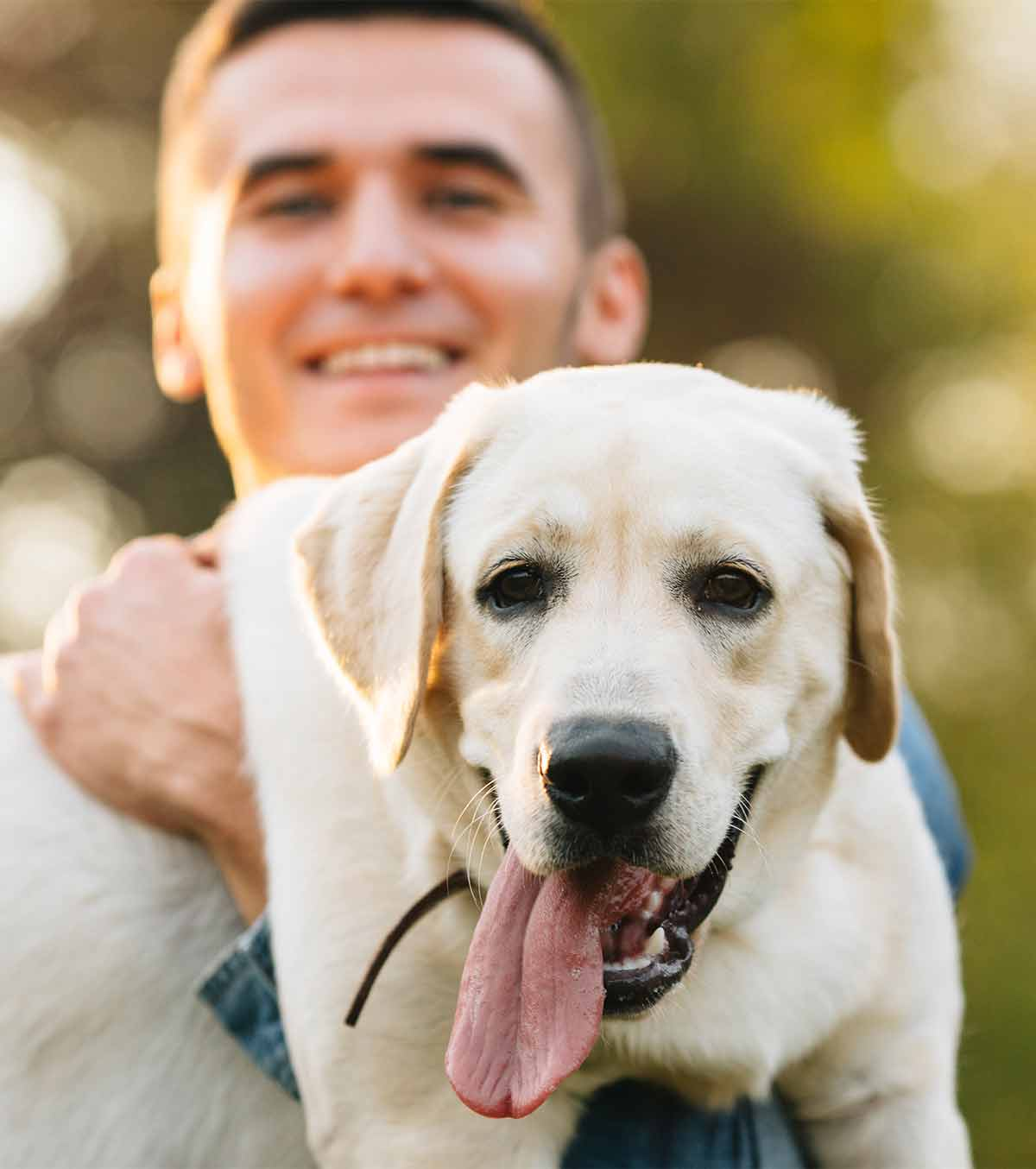 fathers day gift ideas from the dog