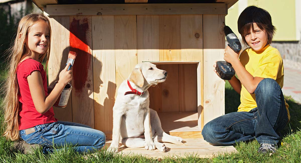 Picture of: Heated Dog House