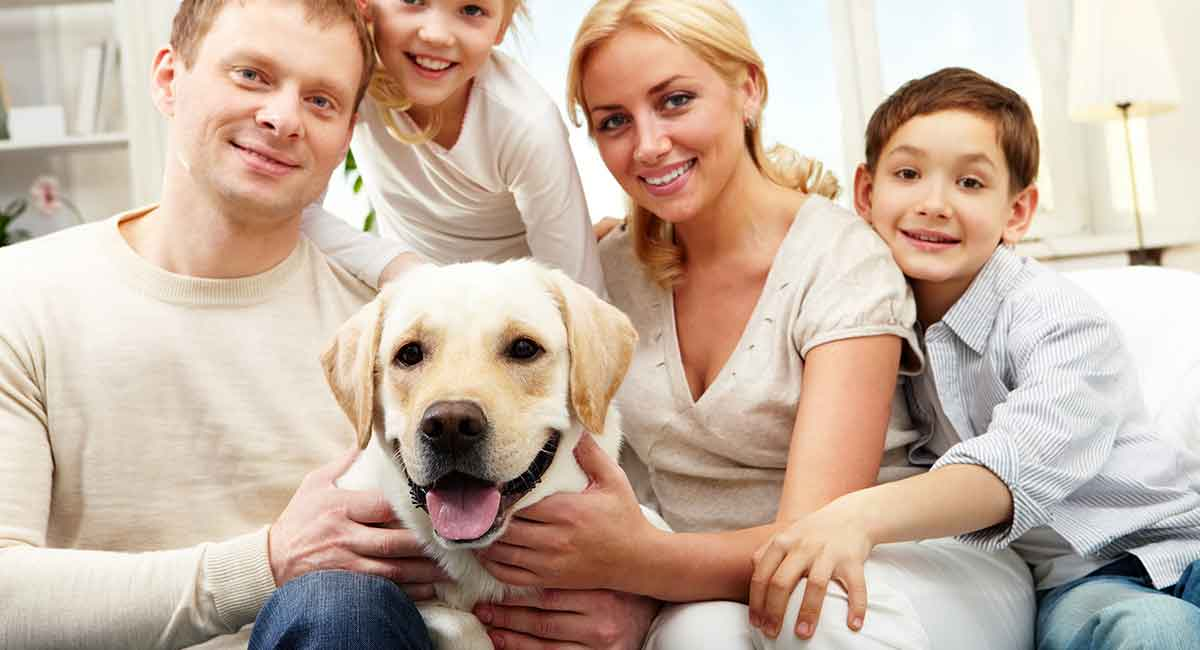 Image result for dog with family