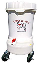 Best Dog Water Dispenser