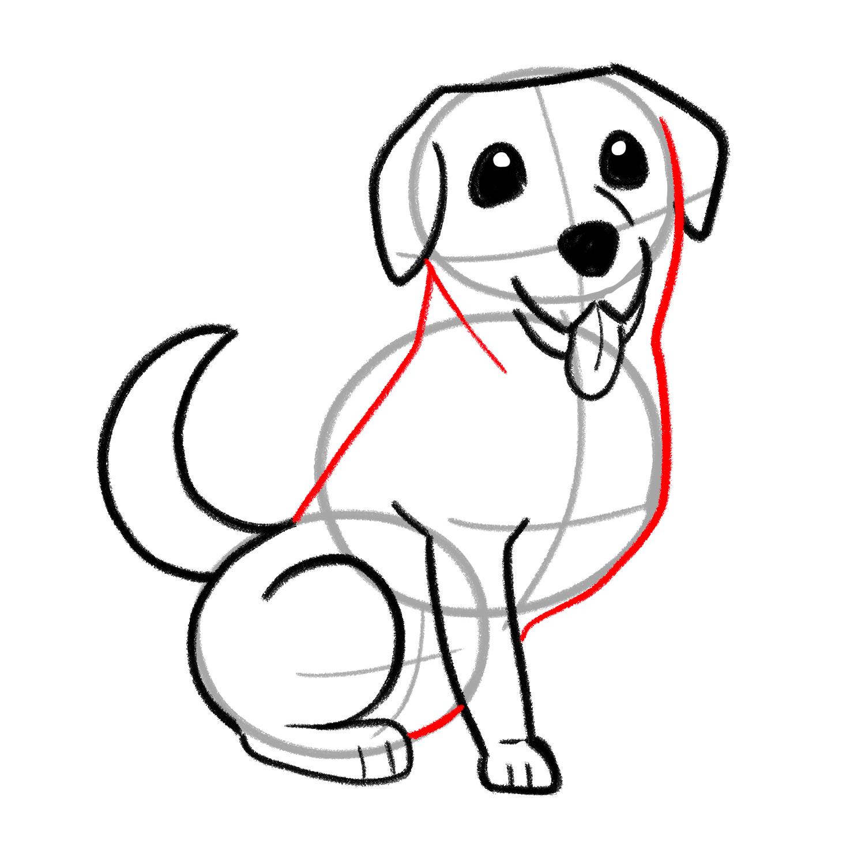 How to draw a Labrador step 04