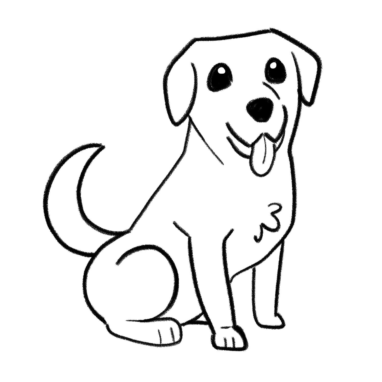 How to draw a Labrador step 06